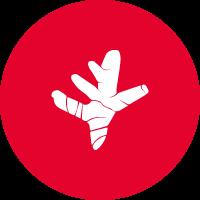 FLEXOFYTOL-icone-curcuma