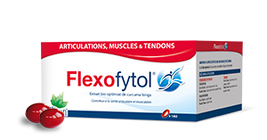 FLEXOFYTOL-pack-180-seul